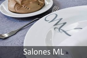 teaser-salones-ml
