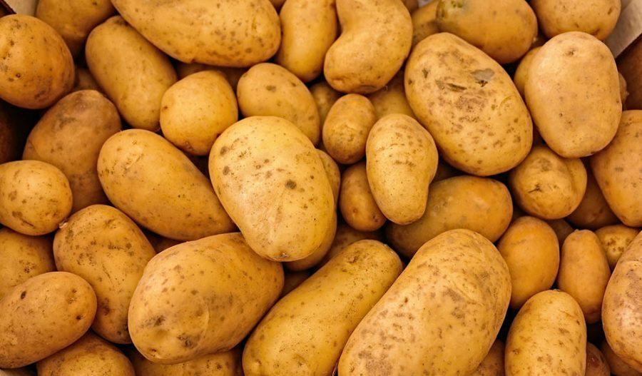 La patata, tan común y tan desconocida